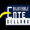 Ente Bilaterale BELLUNO - Contributo straordinario per danni da maltempo di fine ottobre 2018